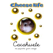 cacahuete Cheese Life